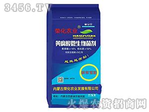 黄腐酸微生物菌剂-荣化农业