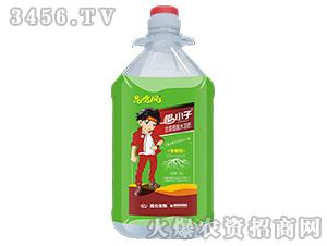 含腐植酸水溶肥(生根型)-根小子-昆仑生物
