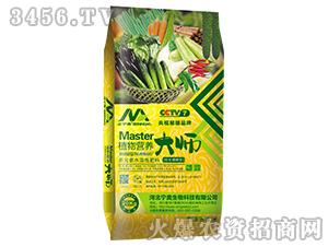 多元素水溶肥料(拉长增粗)-植物营养大师-宁奥