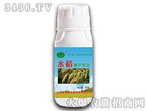 水稻增产状元-亿多收-