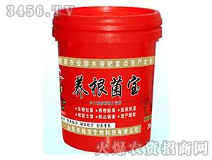 20kg养根菌宝水溶肥-海旺宝-丰旺宝