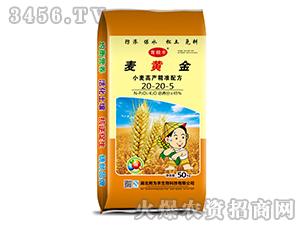 小麦高产精准配方20-20-5-麦黄金-育良丰
