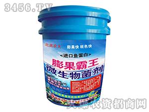 进口鱼蛋白微生物菌剂-