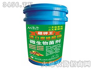 进口腐殖酸钾微生物菌剂
