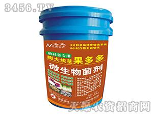 葱姜蒜专用膨大块茎果多多-北美农大