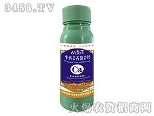 500g牛奶芸苔螯合钙-北美农大