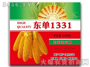 东单1331-玉米杂交种-中合丰农