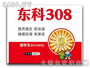 东科308-玉米种子-中合丰农