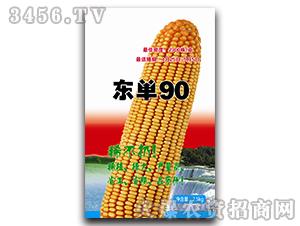 东单90-玉米种子-中合丰农