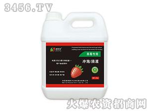 草莓专用冲施滴灌肥-普斯康肥业