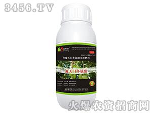 含氨酸水溶肥料(芒果专