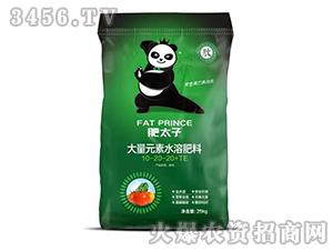 大量元素水溶肥料10-20-20+TE-肥太子-霸尔国际