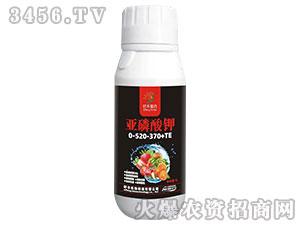亚磷酸钾0-520-370+TE-籽丰鳌合-籽丰生物