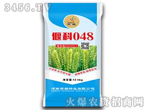 偃科048-小麦种-商都种业