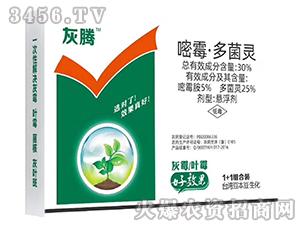 30%嘧霉·多菌灵悬浮剂-灰腾-台湾豆本豆