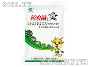 伞形科中草药-药农闲-艾农