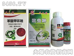 苯醚甲环唑+吡虫啉组合-贵人道-瑞邦化工
