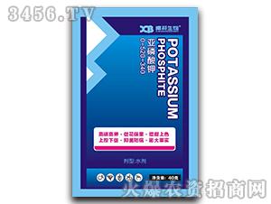 亚磷酸钾0-520-340-曦邦生物