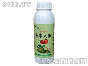 白霉大侠-蛋白营养液-辰盛植物