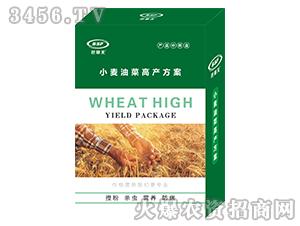 小麦油菜高产方案-笆塞夫