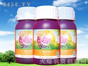 活性高钾肥-禾悦-悦禾生物