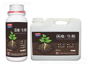 落地·生根(含氨基酸水