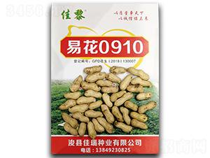 易花0910花生种子-佳黎-凯晨种业