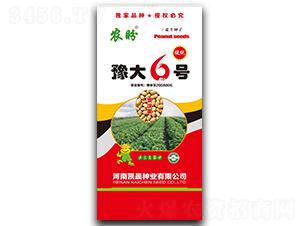 豫大6号花生种子(罗汉果)-农盼-凯晨种业