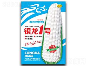 银龙1号-玉米种子-龙大种业
