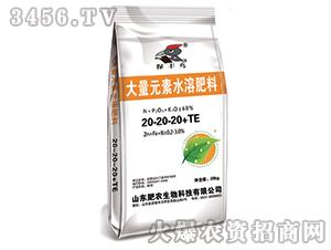 大量元素水溶肥料20-20-20+TE-保丰鸟-肥农生物