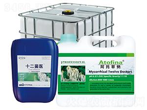 十二菌微生物菌剂-十二