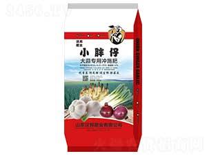 大蒜专用冲施肥-小胖仔-汉邦肥业