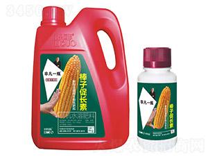 玉米棒子促長素-非凡一瓶-利果國際