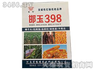 邯玉398-玉米种子-豫穗农业