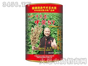 中黄57-大豆种子-�h育种业