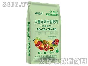 大量元素水溶肥料20-20-20+TE-丽美泽-中农恒大