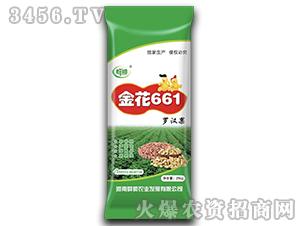 金花661-花生种子-群帅