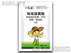 25%吡唑醚菌酯悬浮剂-小孬孩-向上农科
