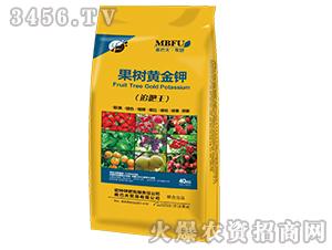 果树黄金钾-海法化学