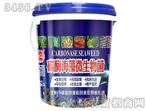 碳酶海藻微生物菌-田园季丰-大丰肥业