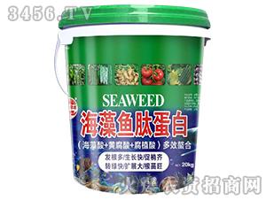 海藻鱼肽蛋白-田园季丰-大丰肥业