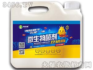 微生物菌剂-豆磷脂(5kg)-植知源