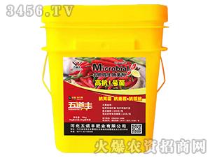 高抗1号菌(农用微生物菌剂)-五道丰