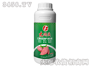 红薯控旺增产诱抗素-大块头-台湾豆本豆