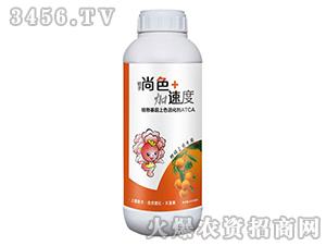 桔子尚色+加速度-台湾豆本豆
