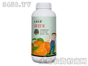 柑橘专用青苔剂-青苔宝-台湾豆本豆