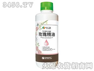 玫瑰精油(瓶)-柯依之绿