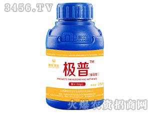 250ml促花型液体肥-极普-唯实农业