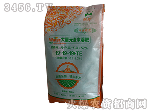 大量元素水溶肥19-19-19+TE-邡润化工