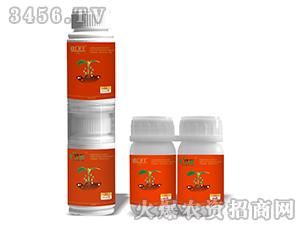 5%吡虫啉+10%高效氯氰菊酯-寸断+铁门闩-中植堂